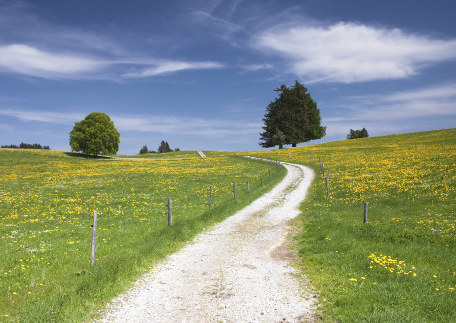 Wandern und Radfahren im Zollernalbkreis