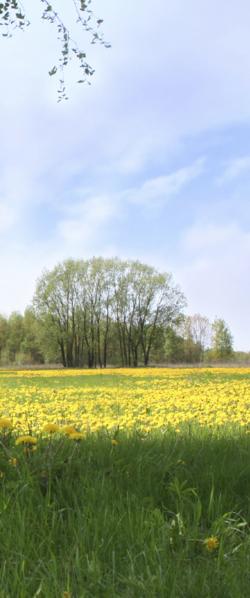 Monteurwohnung in Burladingen auf der Schwäbischen Alb